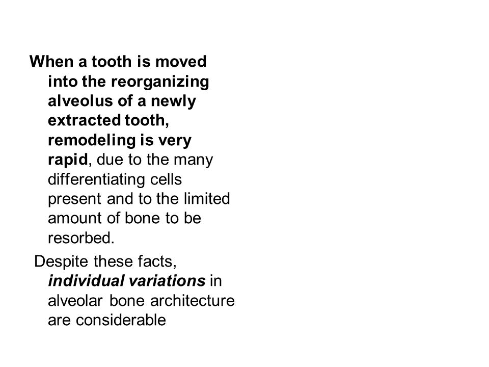When a tooth is moved into the reorganizing alveolus of a newly extracted tooth, remodeling is very rapid, due to the many differentiating cells present and to the limited amount of bone to be resorbed.
