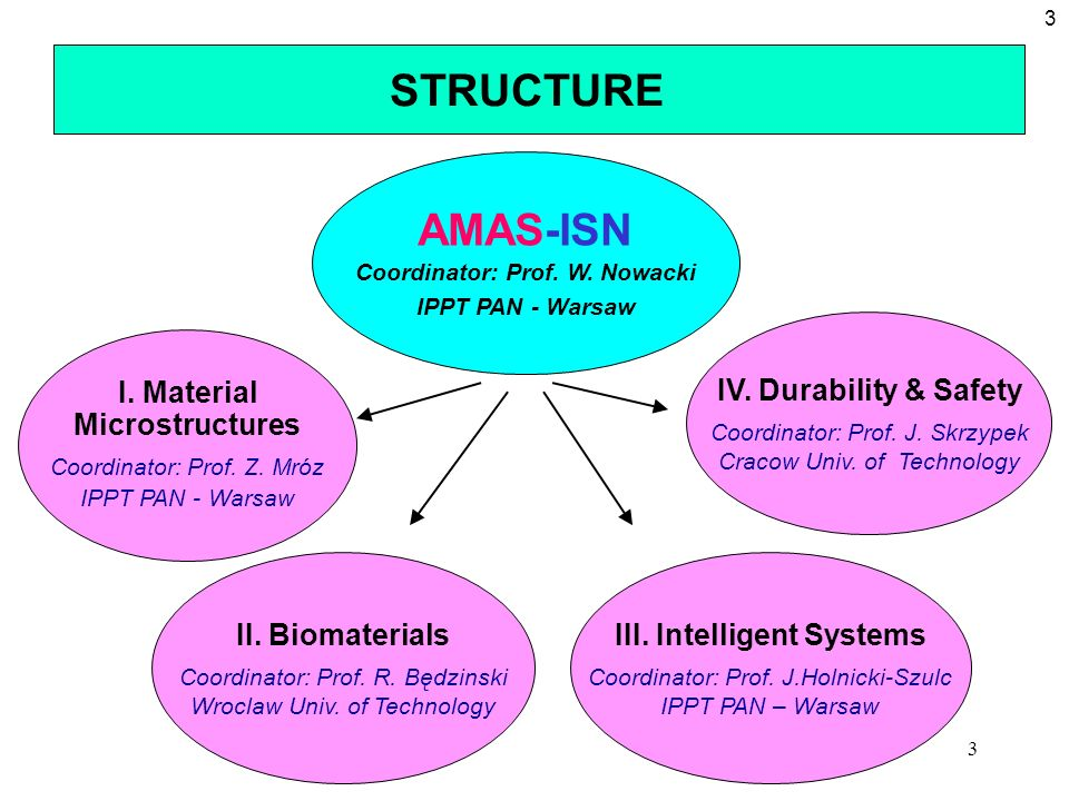 Coordinator: Prof. W. Nowacki III. Intelligent Systems