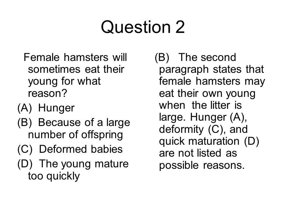 Question 2 Female hamsters will sometimes eat their young for what reason (A) Hunger. (B) Because of a large number of offspring.