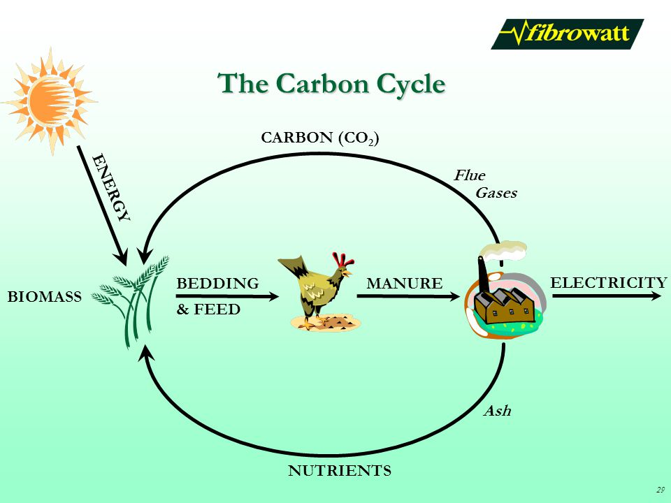 The Carbon Cycle CARBON (CO2) ENERGY Flue Gases BEDDING MANURE