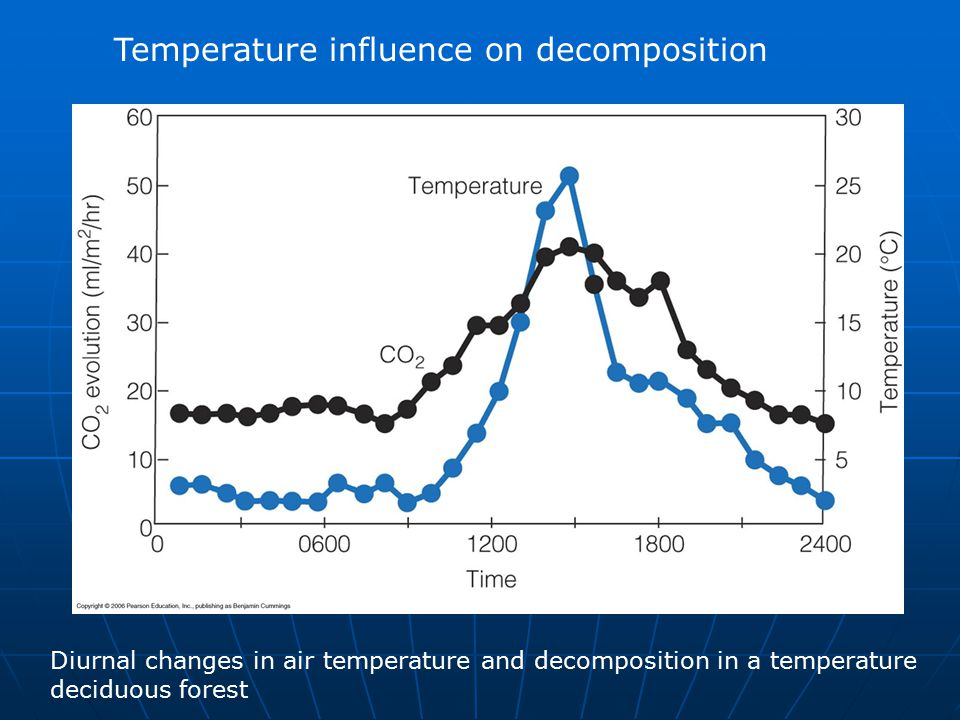 Temperature influence on decomposition