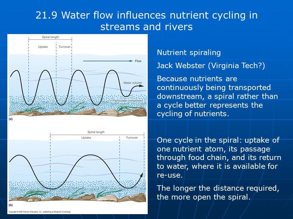 21.9 Water flow influences nutrient cycling in streams and rivers