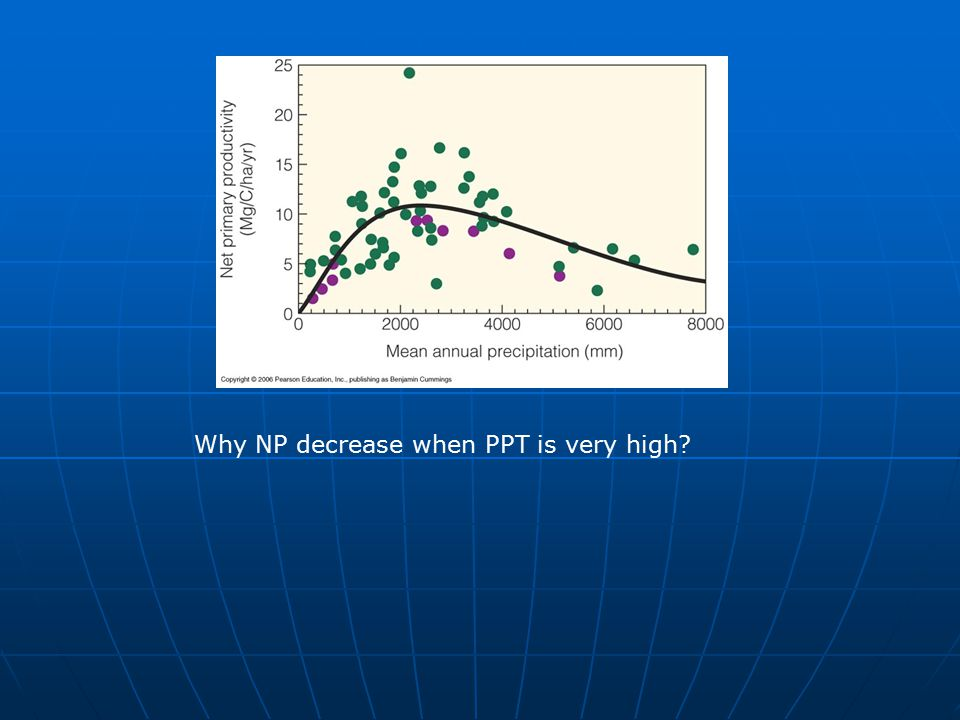 Why NP decrease when PPT is very high
