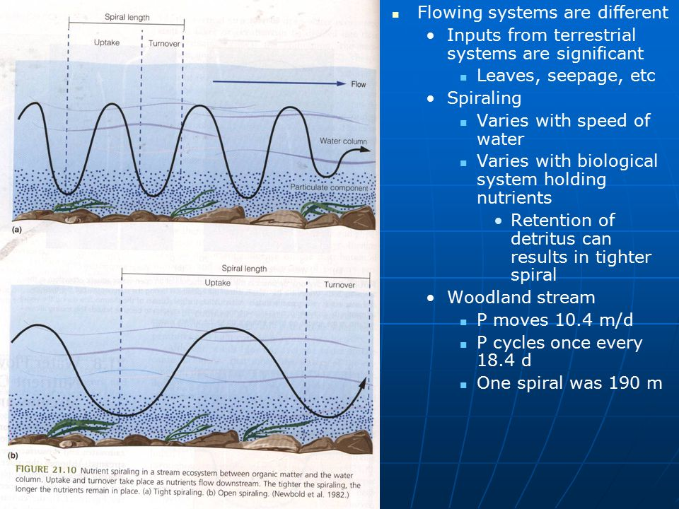 Flowing systems are different
