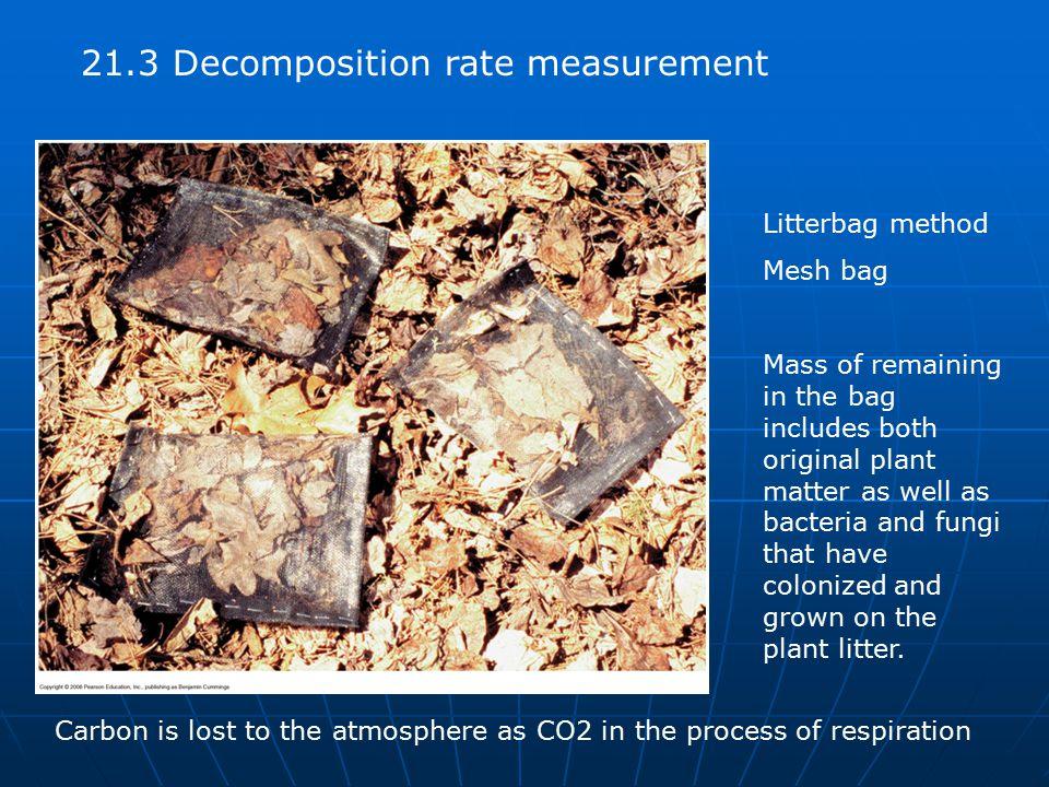 21.3 Decomposition rate measurement