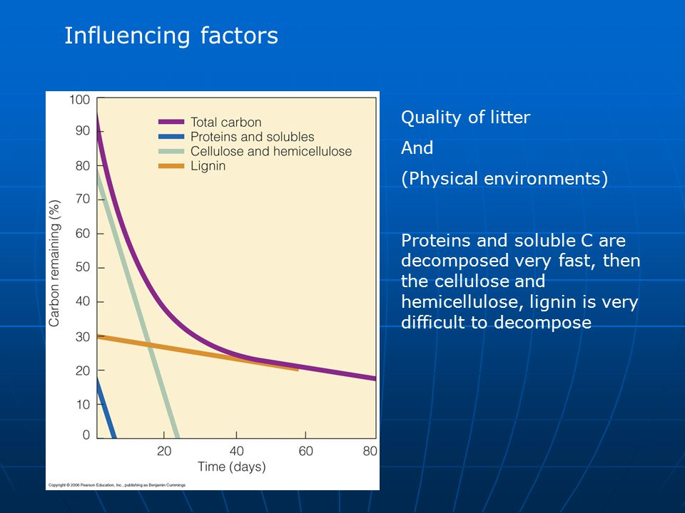 Influencing factors Quality of litter And (Physical environments)