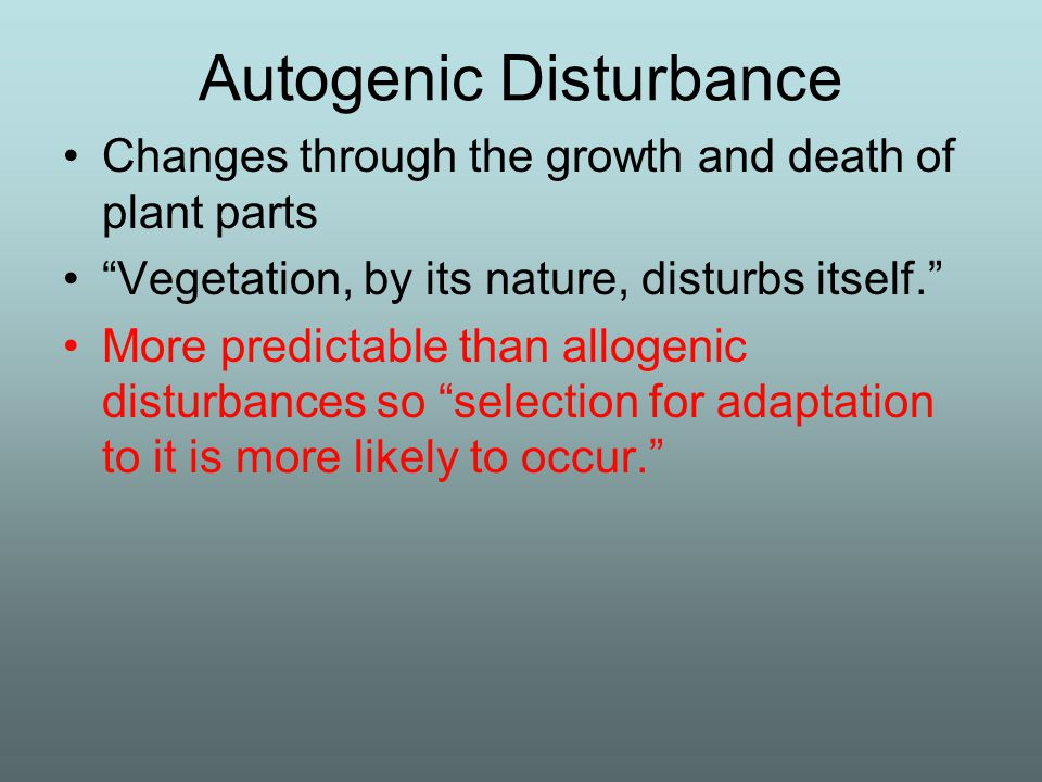 Autogenic Disturbance