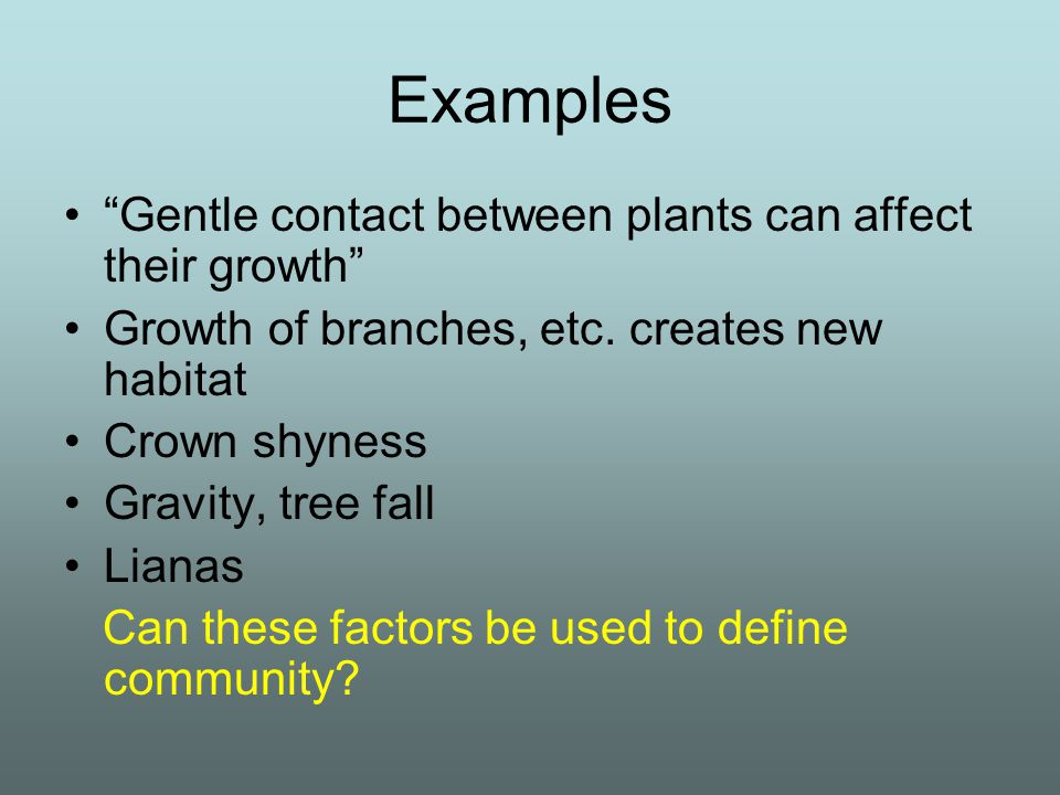 Examples Gentle contact between plants can affect their growth