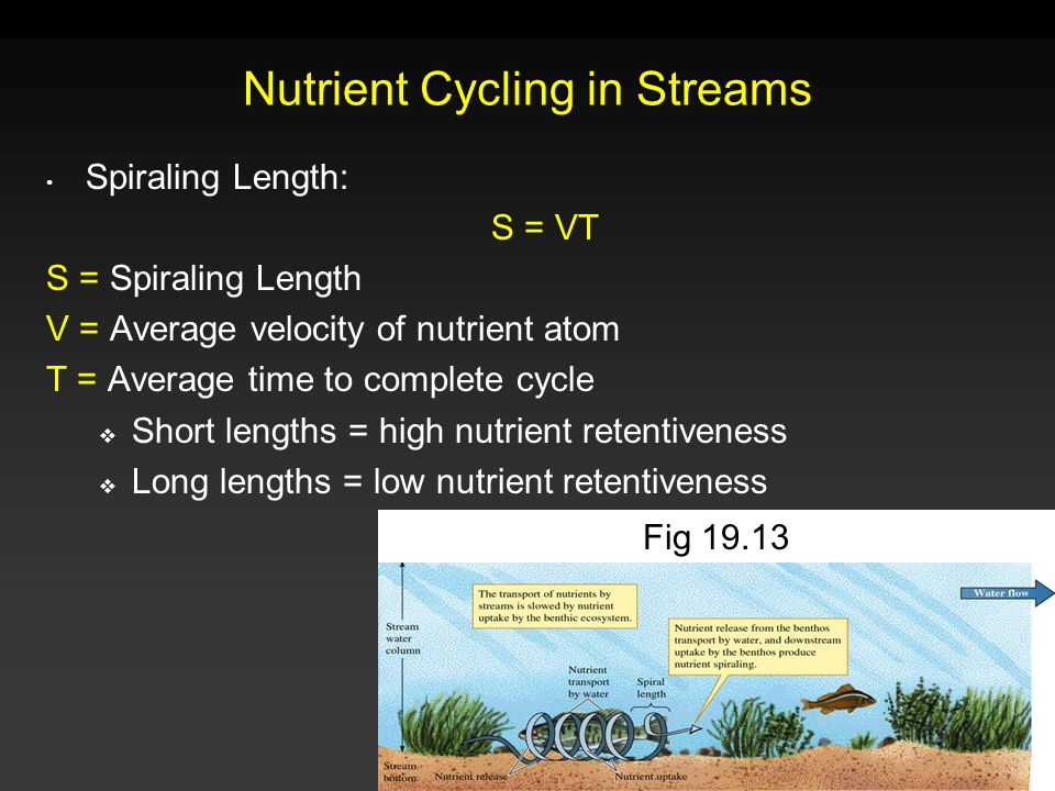 Nutrient Cycling in Streams