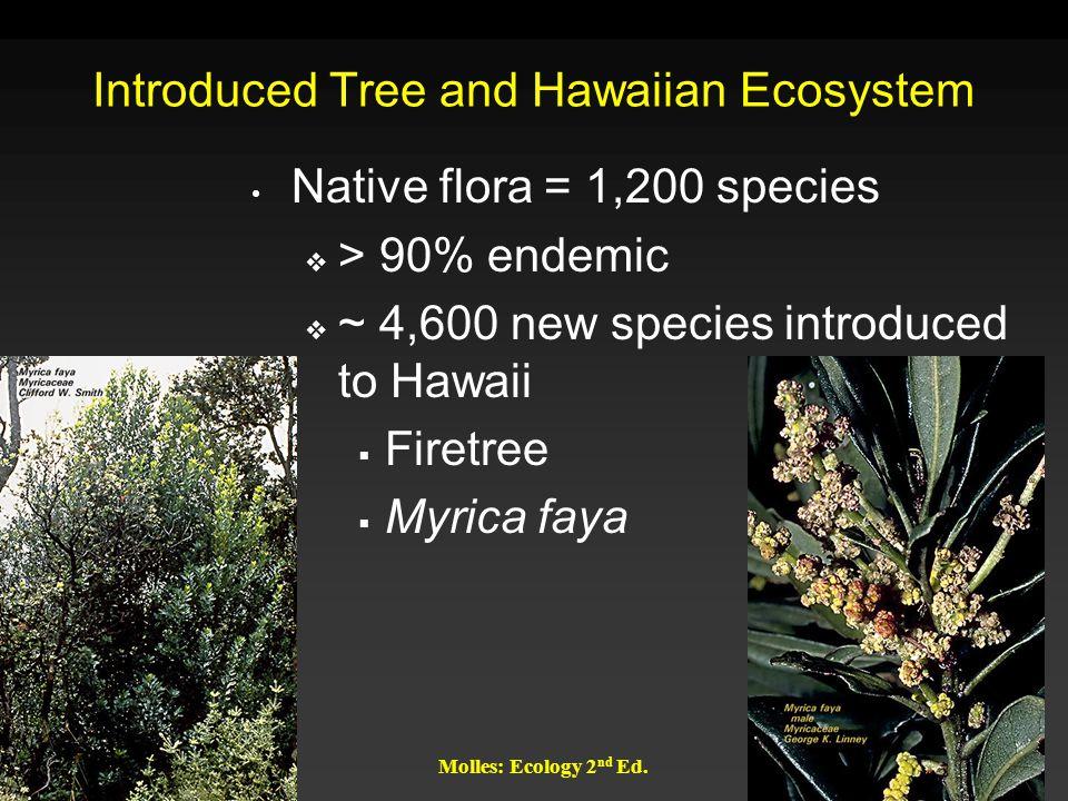 Introduced Tree and Hawaiian Ecosystem