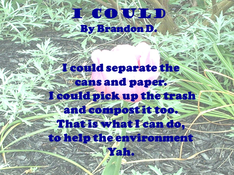 I could pick up the trash to help the environment