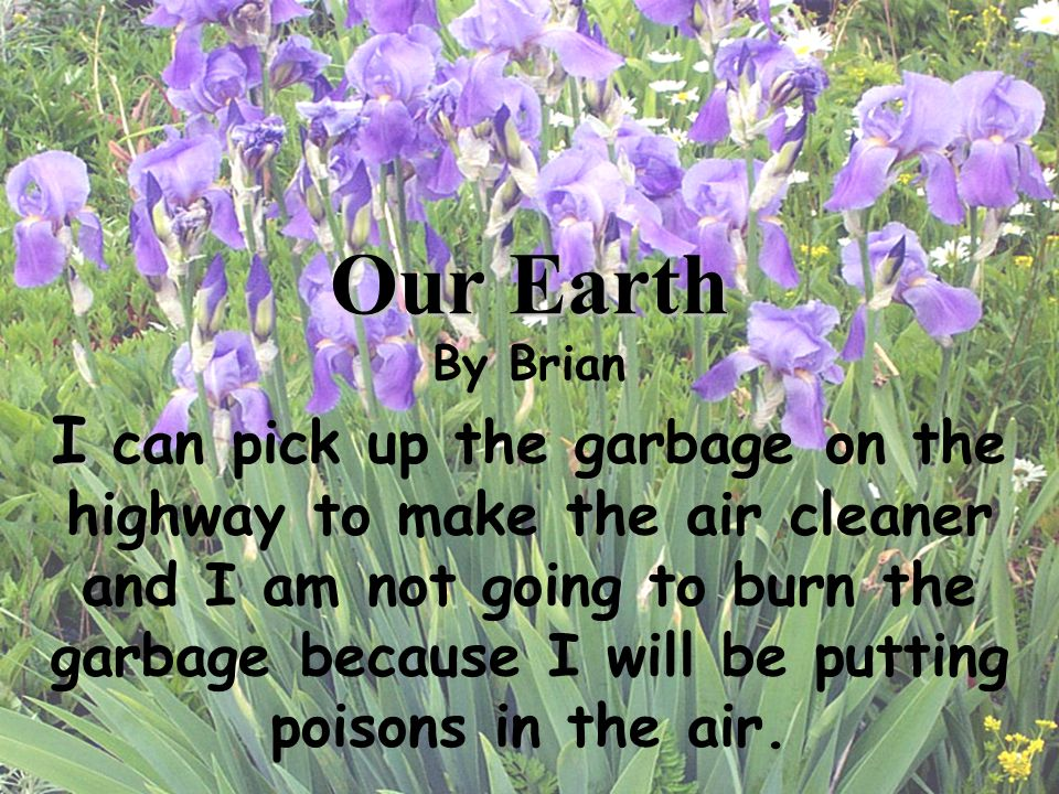 Our Earth By Brian