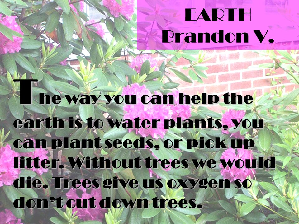 EARTH Brandon V.