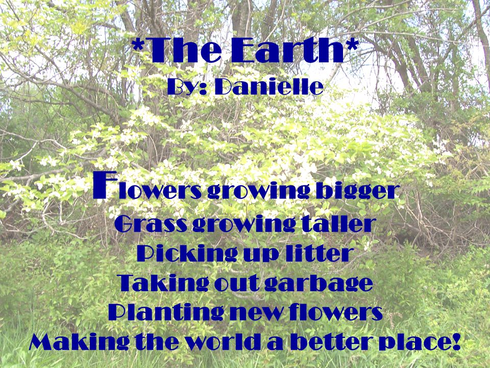 *The Earth* By: Danielle