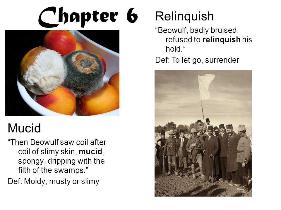 Chapter 6 Relinquish Mucid