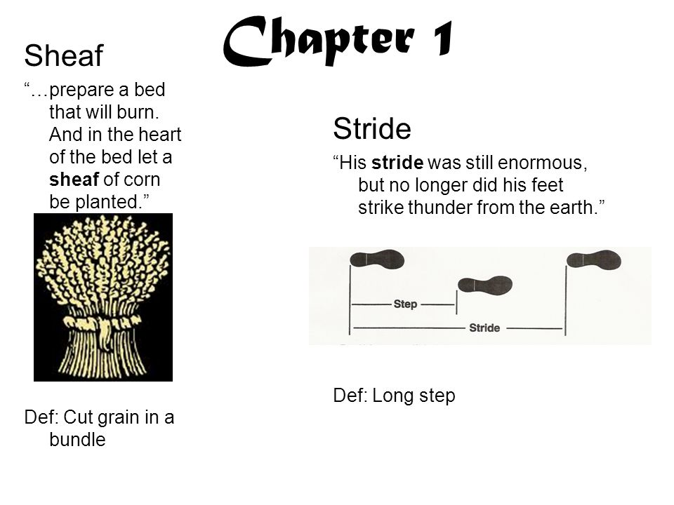 Chapter 1 Sheaf. …prepare a bed that will burn. And in the heart of the bed let a sheaf of corn be planted.