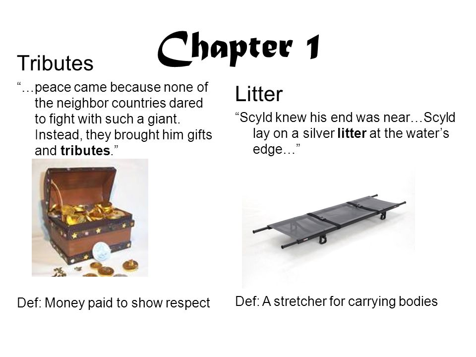 Chapter 1 Tributes Litter