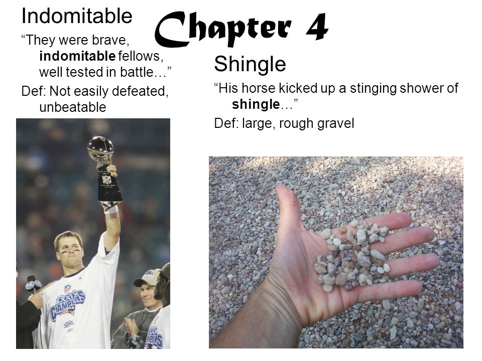 Chapter 4 Indomitable Shingle