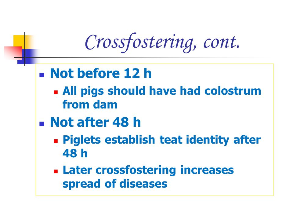 Crossfostering, cont. Not before 12 h Not after 48 h