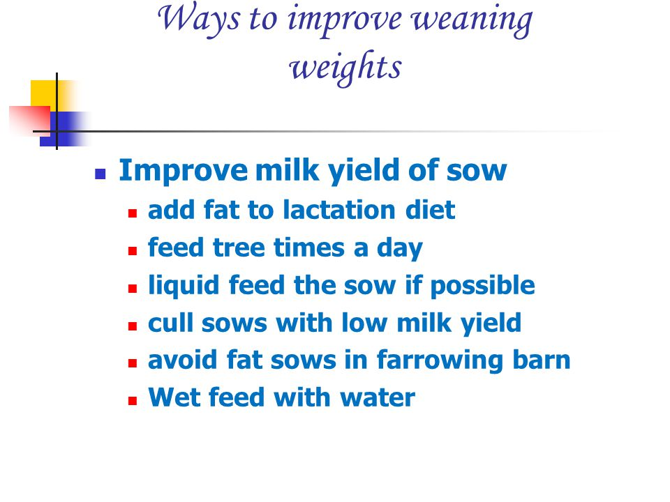 Ways to improve weaning weights