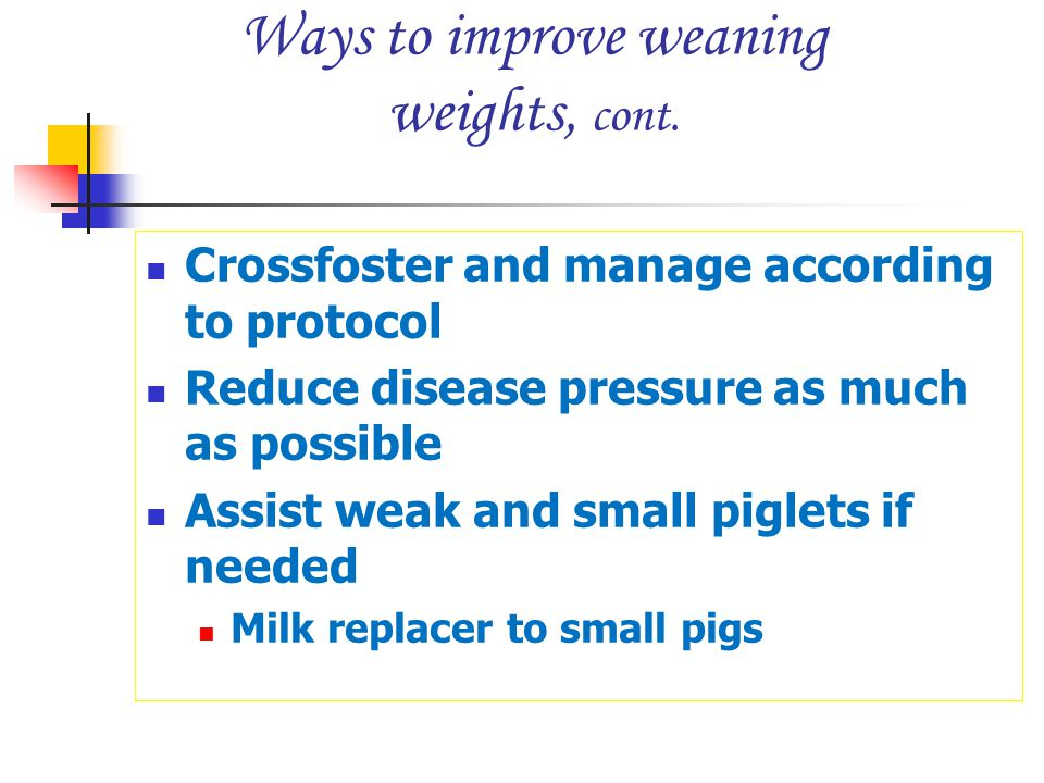Ways to improve weaning weights, cont.