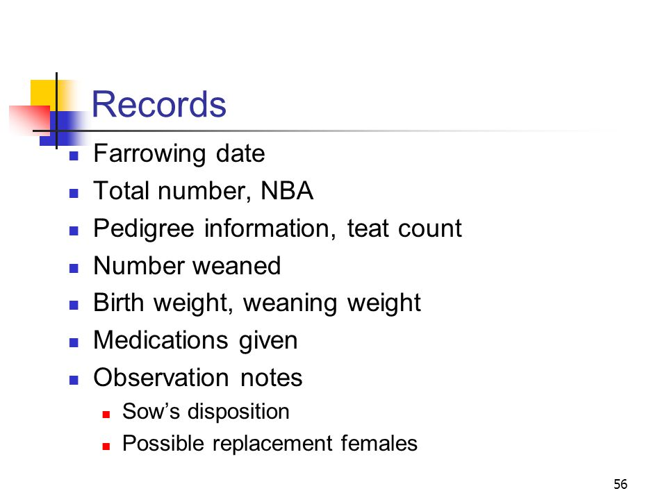 Records Farrowing date Total number, NBA