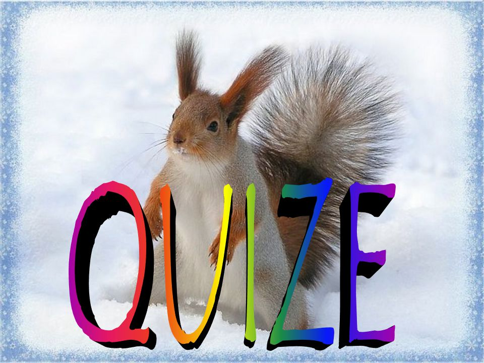 QUIZE