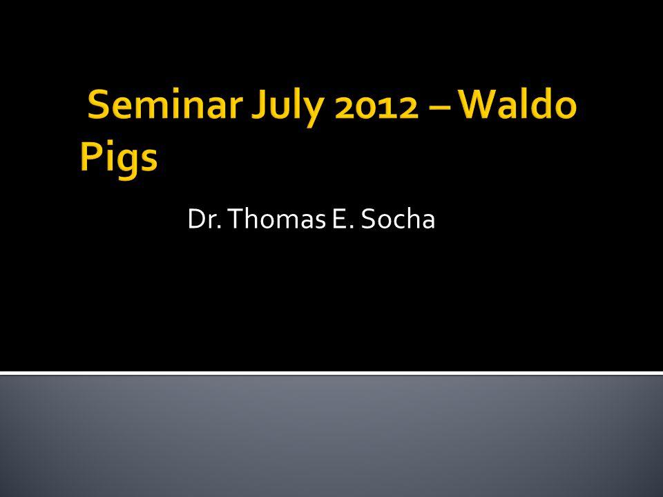 Seminar July 2012 – Waldo Pigs