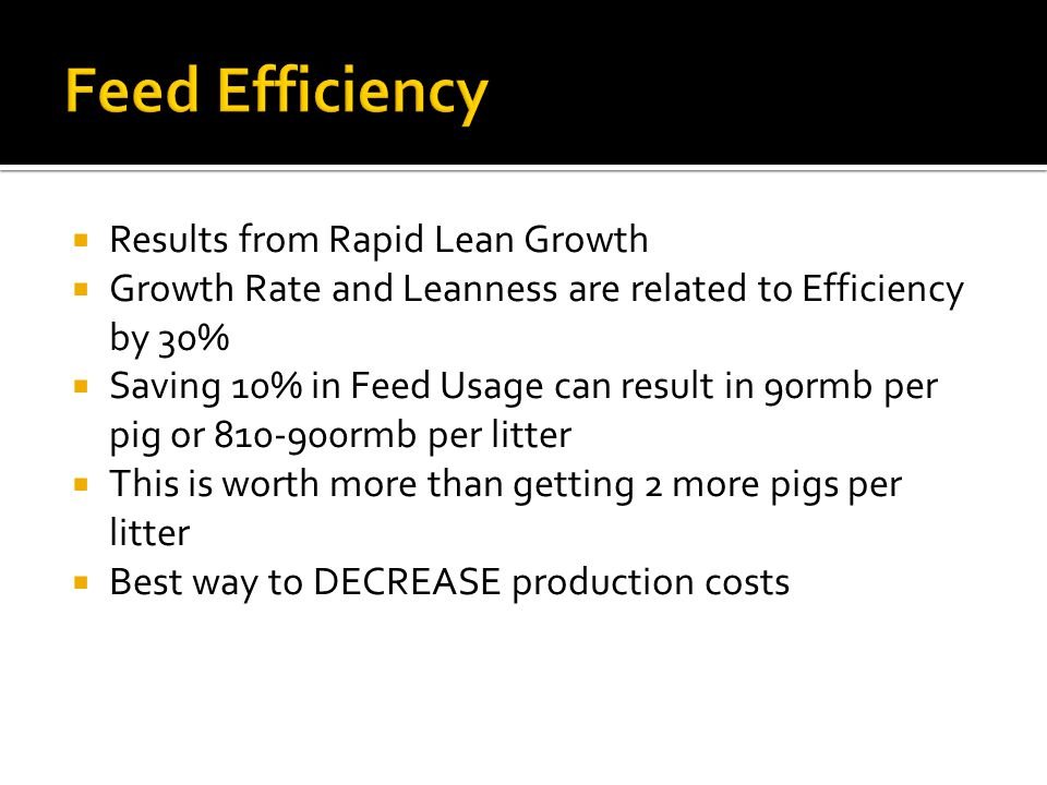Feed Efficiency Results from Rapid Lean Growth