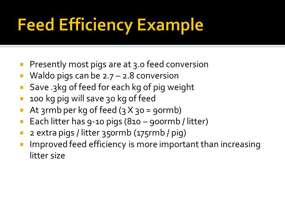 Feed Efficiency Example