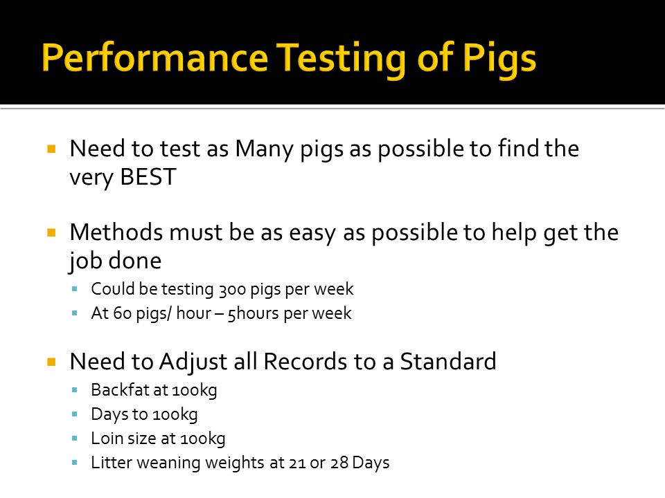 Performance Testing of Pigs