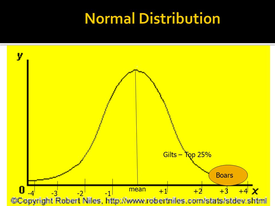 Normal Distribution Gilts – Top 25% Boars. mean.