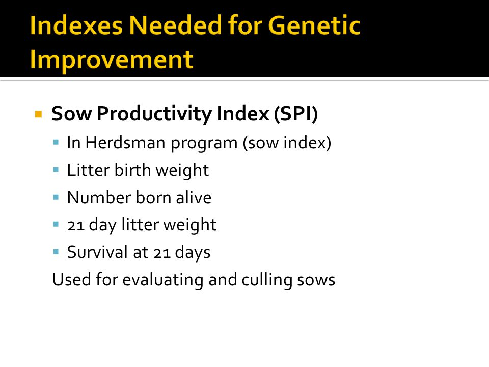 Indexes Needed for Genetic Improvement