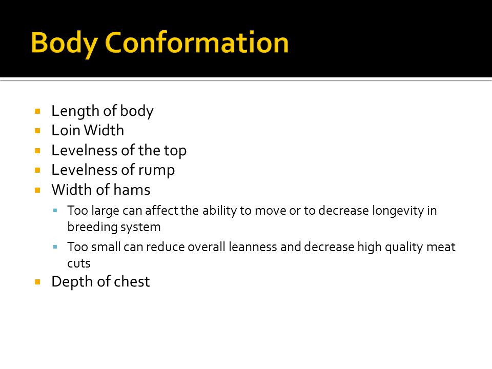 Body Conformation Length of body Loin Width Levelness of the top