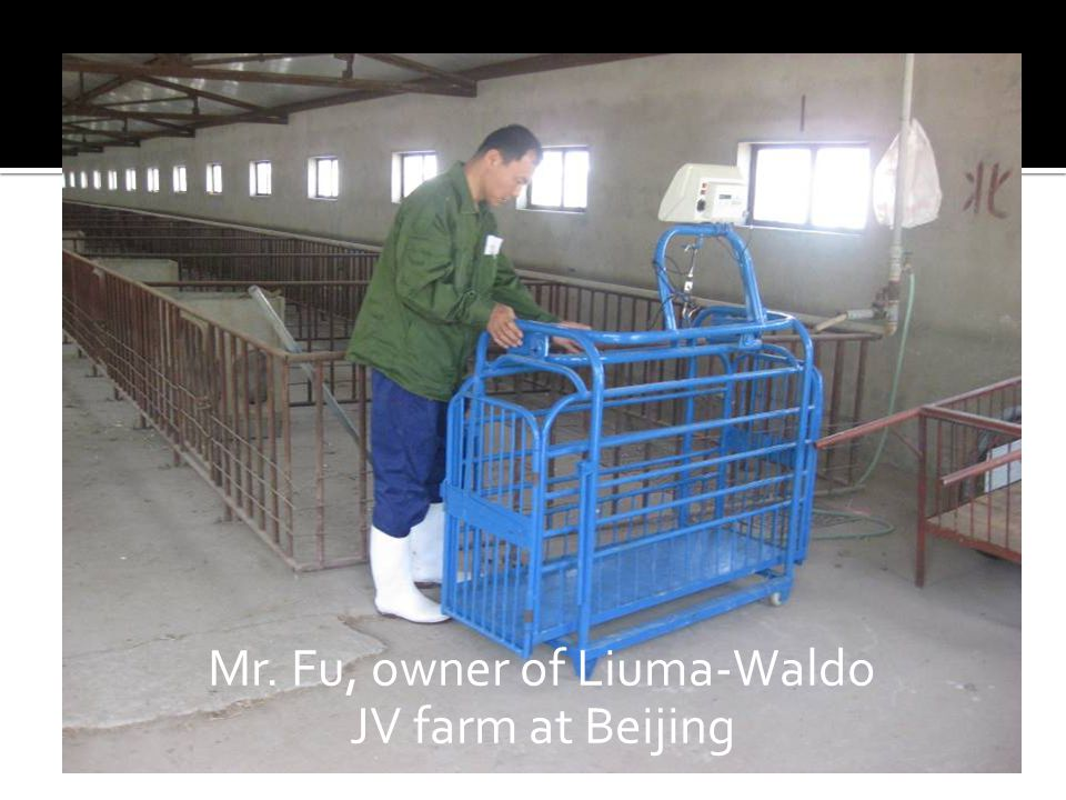 Mr. Fu, owner of Liuma-Waldo