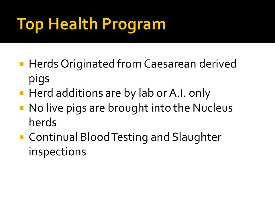 Top Health Program Herds Originated from Caesarean derived pigs