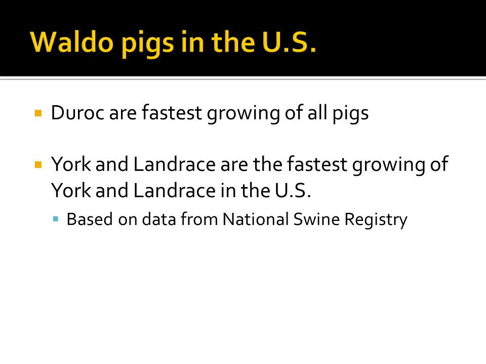 Waldo pigs in the U.S. Duroc are fastest growing of all pigs