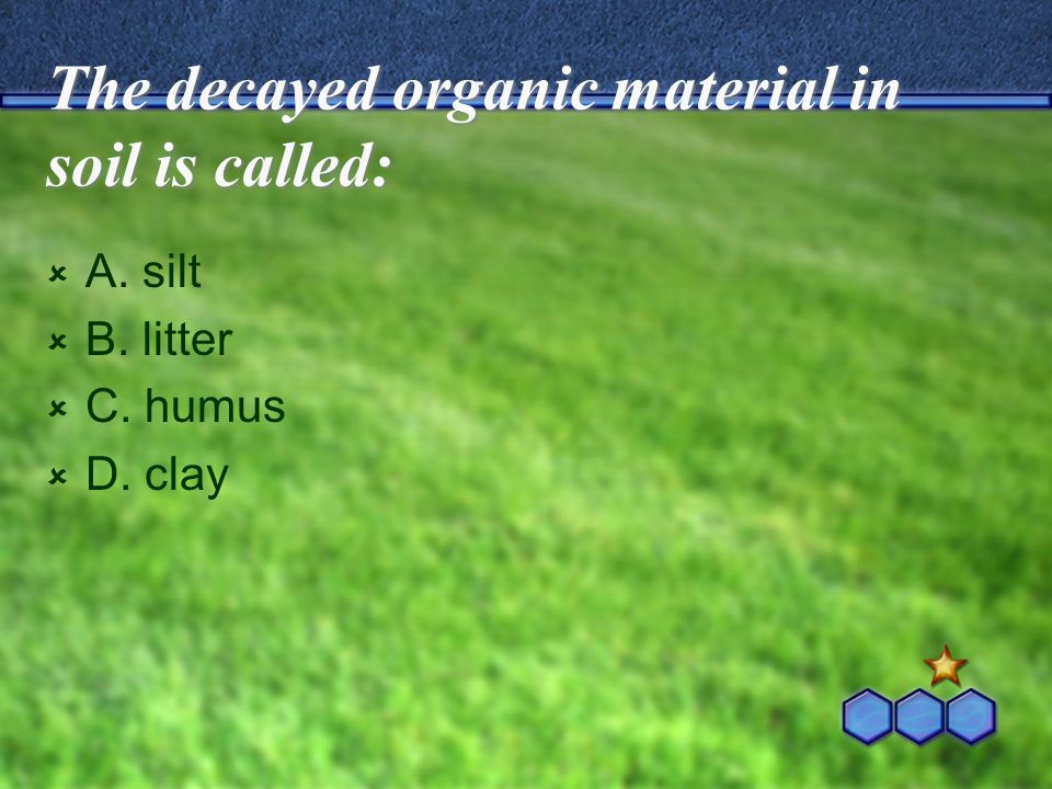 The decayed organic material in soil is called: