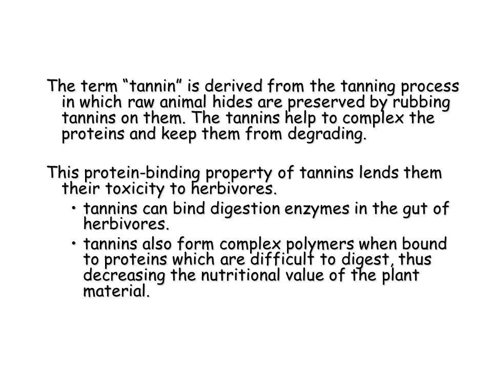The term tannin is derived from the tanning process in which raw animal hides are preserved by rubbing tannins on them. The tannins help to complex the proteins and keep them from degrading.