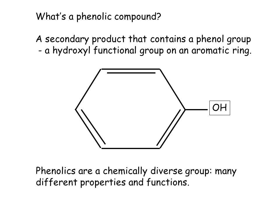 What's a phenolic compound