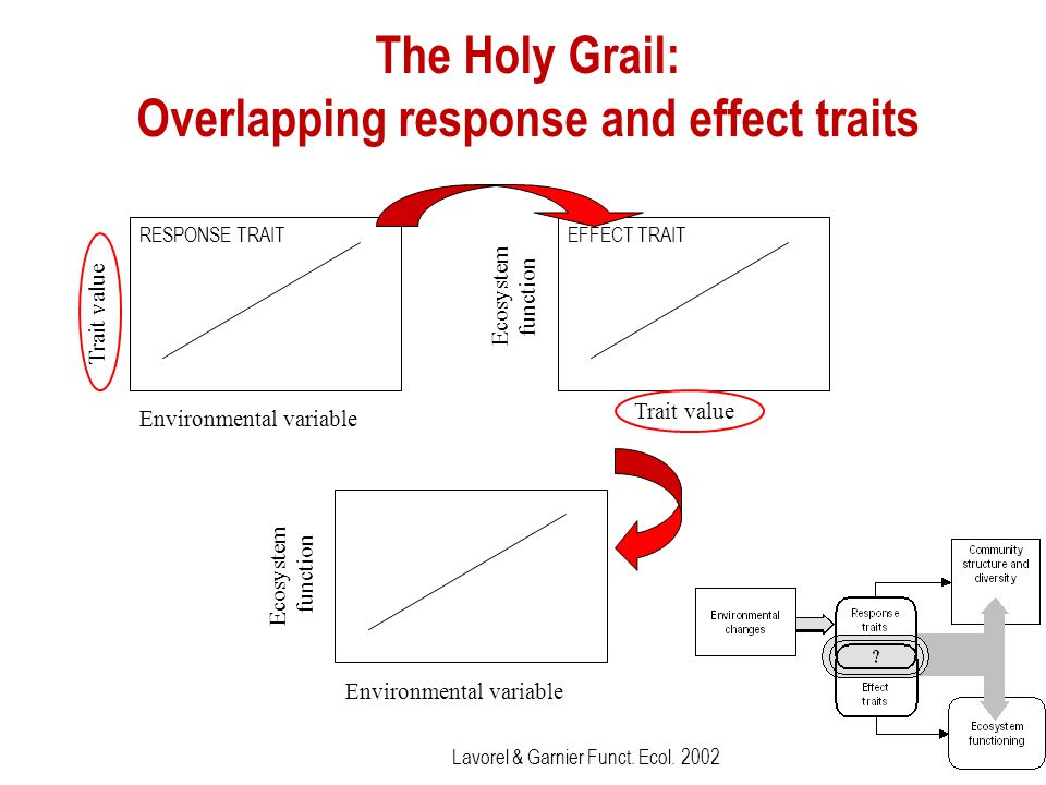 The Holy Grail: Overlapping response and effect traits