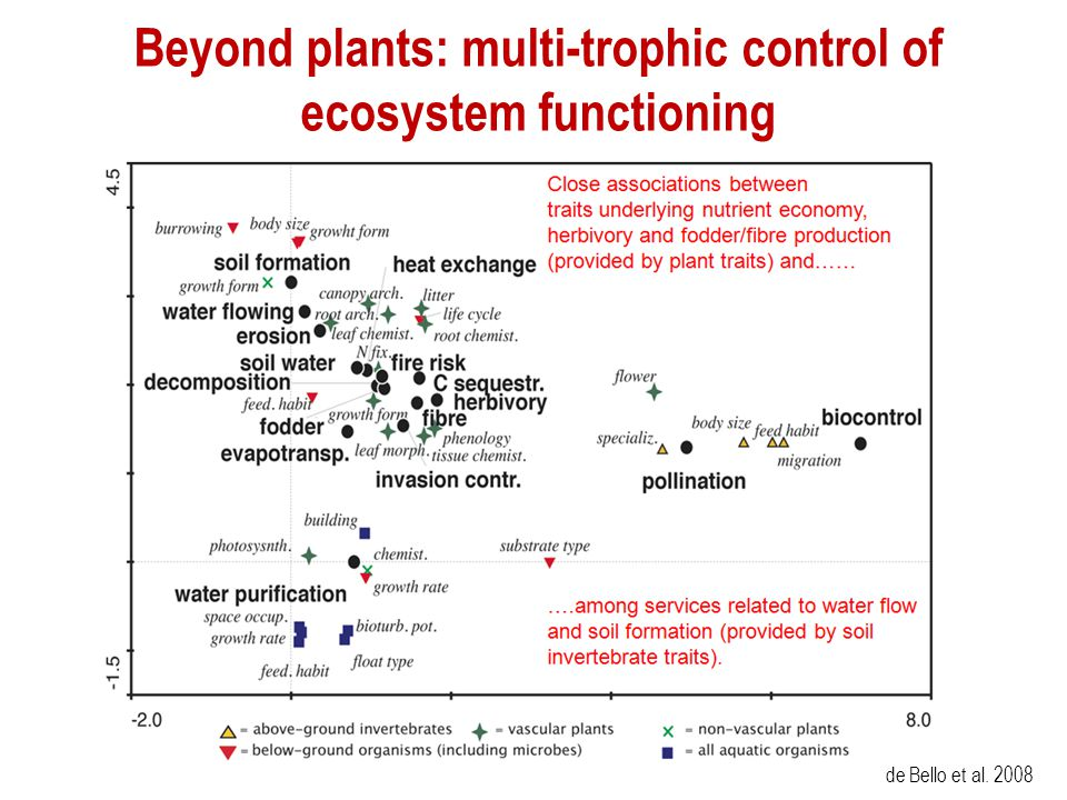 Beyond plants: multi-trophic control of ecosystem functioning