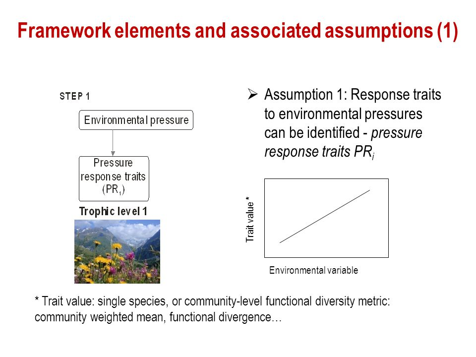 Framework elements and associated assumptions (1)