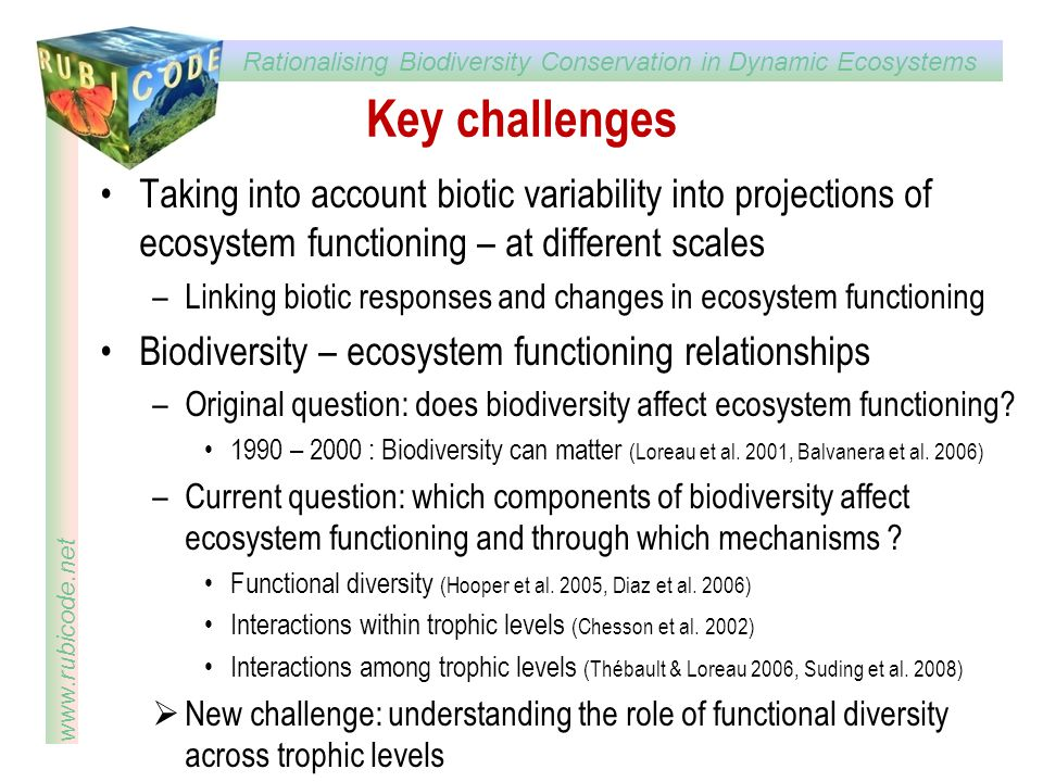 Key challenges Taking into account biotic variability into projections of ecosystem functioning – at different scales.