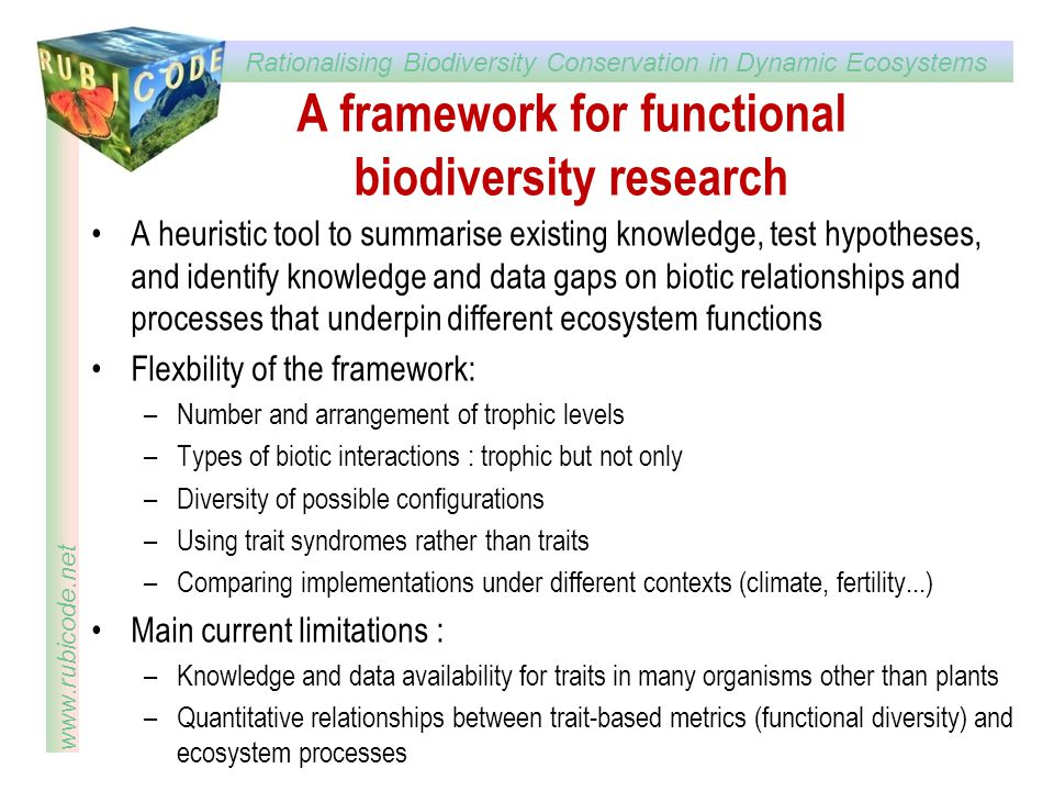 A framework for functional biodiversity research