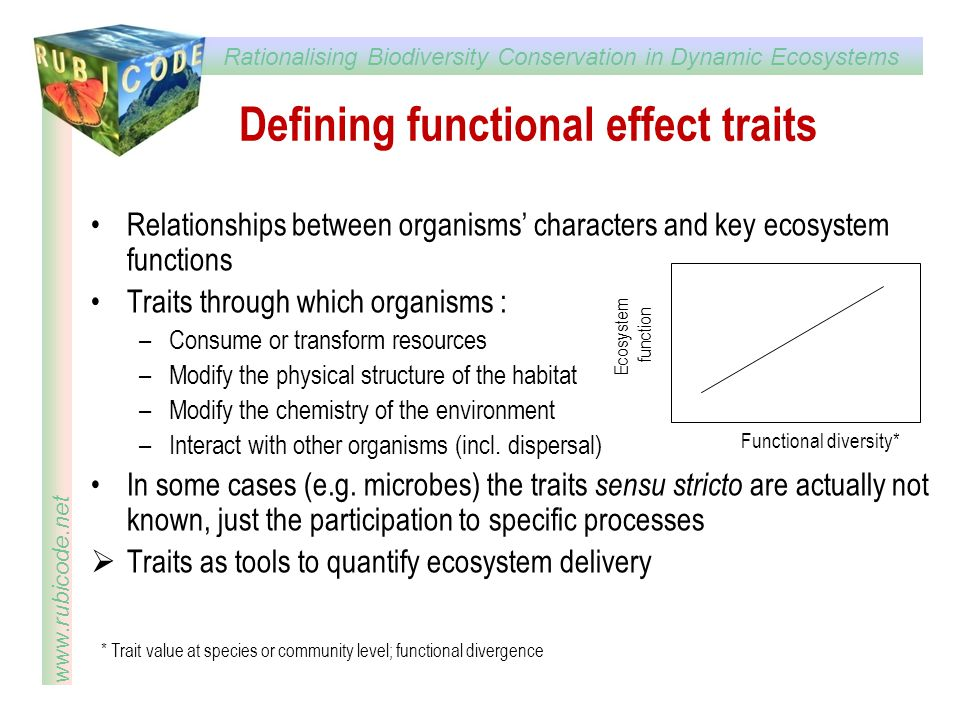 Defining functional effect traits