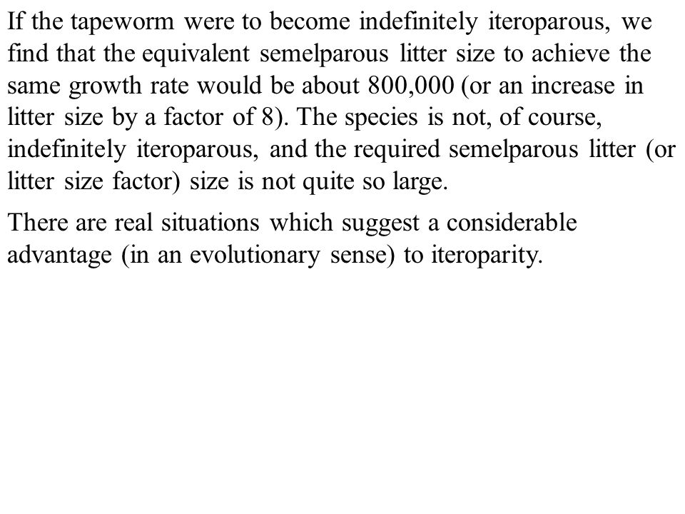 If the tapeworm were to become indefinitely iteroparous, we find that the equivalent semelparous litter size to achieve the same growth rate would be about 800,000 (or an increase in litter size by a factor of 8). The species is not, of course, indefinitely iteroparous, and the required semelparous litter (or litter size factor) size is not quite so large.