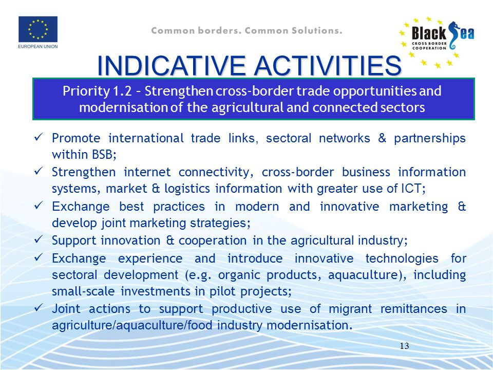 INDICATIVE ACTIVITIES