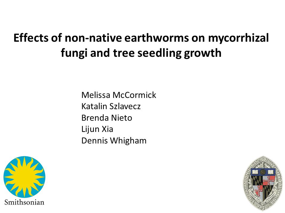 Effects of non-native earthworms on mycorrhizal fungi and tree seedling growth