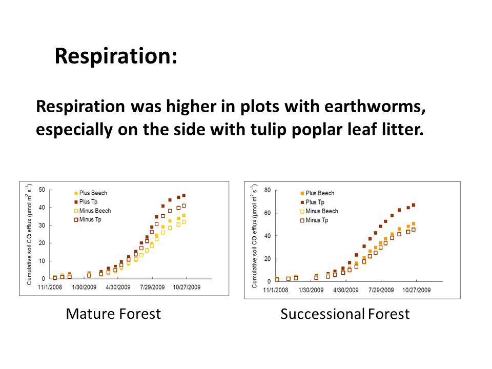 Respiration: Respiration was higher in plots with earthworms, especially on the side with tulip poplar leaf litter.